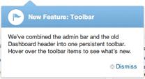 Screenshot of a Feature Pointer