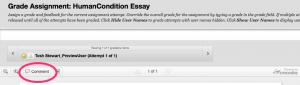 Grade_Assignment__HumanCondition_Essay_–_DEMO008