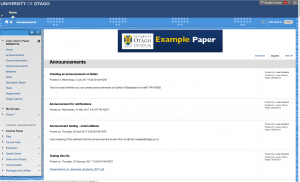 An example paper with a course theme on the current version of Otago Capture