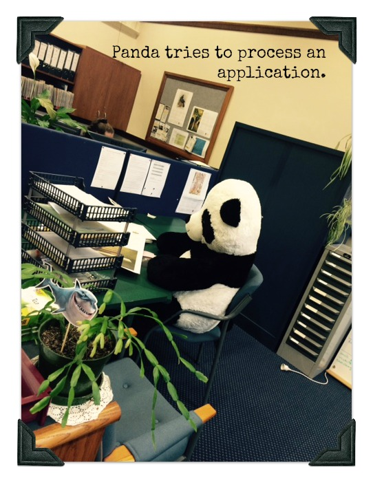 Panda in schols office