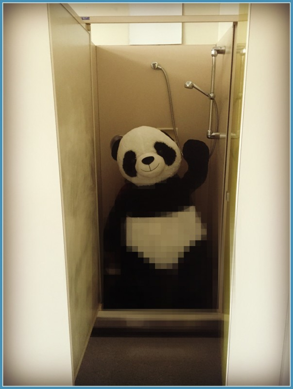 Panda in the shower