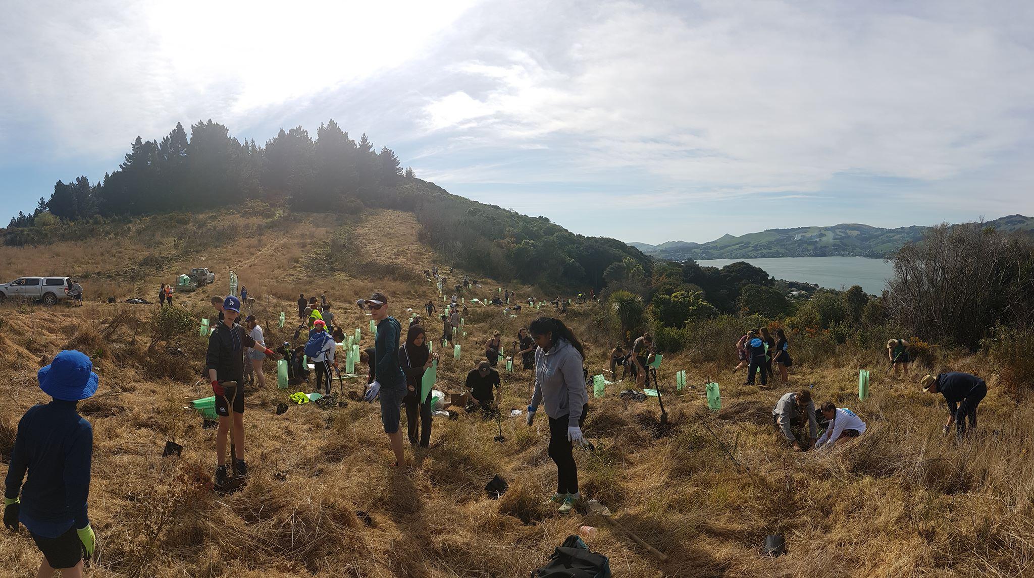 Otago International Blog | The University of Otago