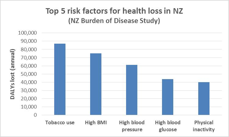 NZ Health Strategy blog
