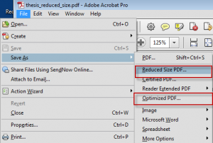 Save as options from Acrobat pro