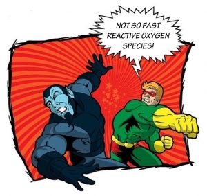 Cartoon of superhero punching bad guy and saying 'Not so fast reactive oxygen species'.