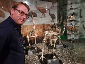 Paul Gardner standing in front of moa skeletons at the Otago Museum.