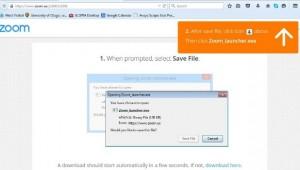 Firefox Zoom Install