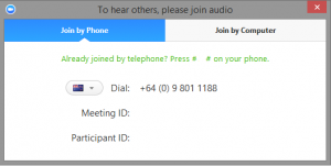 Join Audio by Telephone